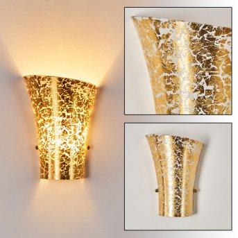 Terni Applique Oro, 1-Luce