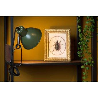 Lucide MOYS Lampada con pinza Verde, 1-Luce