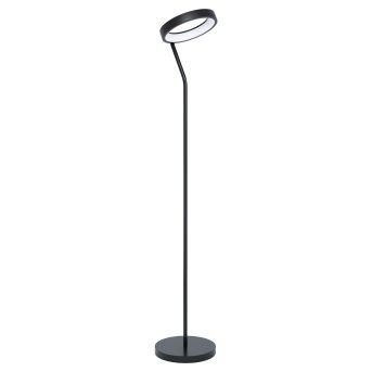 Eglo MARGHERA Lampada da terra LED Nero, 1-Luce, Cambia colore