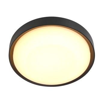 Steinhauer Fuga Plafoniera da esterno LED Nero, 1-Luce