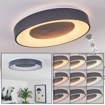 Casina Plafoniera LED Antracite, Bianco, 1-Luce, Telecomando