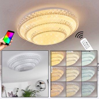 Roseto Plafoniera LED Bianco, Trasparente, chiaro, 1-Luce, Telecomando