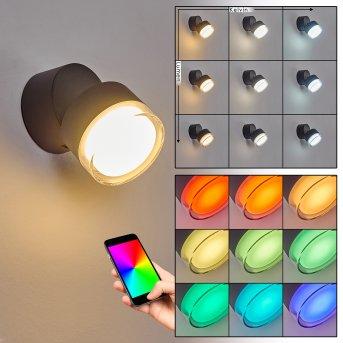 Papagayos Applique da esterno LED Antracite, 1-Luce, Cambia colore