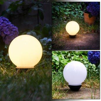 Campinas Lampada a sfera LED Nero, Bianco, 1-Luce