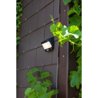 Lutec TRY Lampade solari LED Antracite, 1-Luce, Sensori di movimento