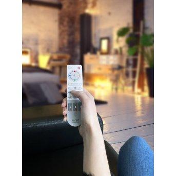 Lutec Remote Telecomando Grigio, Bianco