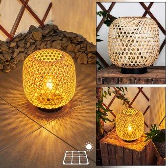 Conneaut Lampada solare LED Nero, Legno chiaro, 1-Luce