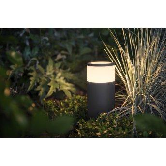 Philips Hue Ambiance White & Color Calla Piedistallo, set di base LED Nero, 1-Luce, Cambia colore
