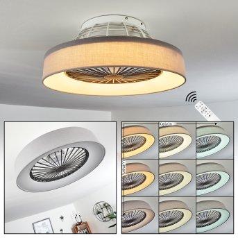 Moli ventilatore da soffitto LED Grigio, Bianco, 1-Luce, Telecomando