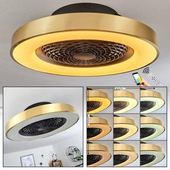 Penon ventilatore da soffitto LED Nero, 1-Luce, Telecomando