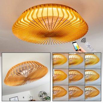 Rivarotta ventilatore da soffitto LED Bianco, 1-Luce, Telecomando