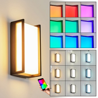 Skove Applique da esterno LED Antracite, 1-Luce, Cambia colore