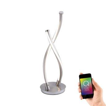 Paul Neuhaus Q-MALINA Lampada da Tavolo LED Acciaio inox, 2-Luci, Telecomando