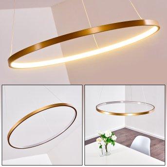 Canisteo Lampadario a sospensione LED Oro, 1-Luce