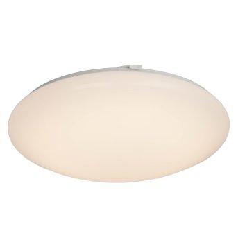 AEG Basic Plafoniera LED Bianco, 1-Luce
