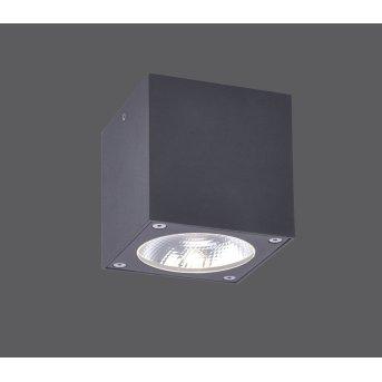 Paul Neuhaus GEORG Plafoniera LED Antracite, 1-Luce