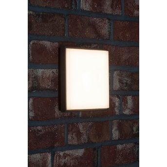 AEG Letan Square Applique per esterno LED Antracite, Bianco, 1-Luce
