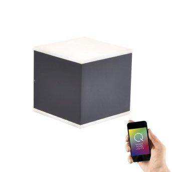 Paul Neuhaus Q-AMIN Applique LED Antracite, 2-Luci, Telecomando, Cambia colore