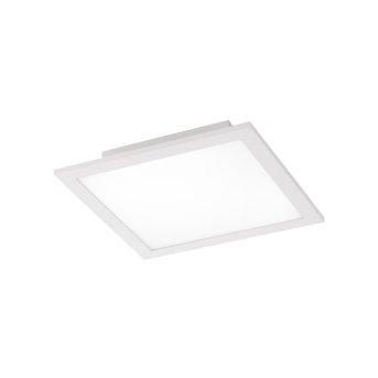 Leuchten Direkt Ls-FLAT Plafoniera LED Bianco, 1-Luce, Telecomando, Cambia colore
