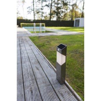 Lutec Solstel Lampioncino Segnapasso LED Acciaio inox, 1-Luce, Sensori di movimento
