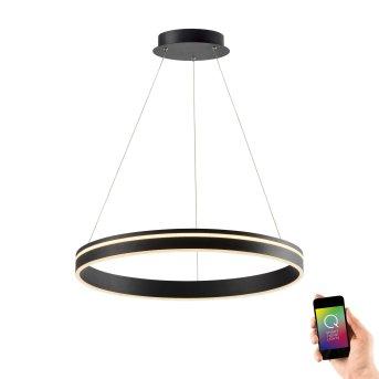 Lampada a Sospensione Paul Neuhaus Q-VITO LED Antracite, 1-Luce, Telecomando