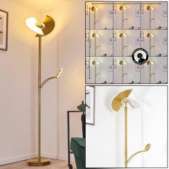 Cazis Lampada da terra LED Oro, 2-Luci