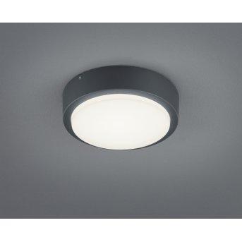 Trio BREG Applique LED Antracite, 1-Luce