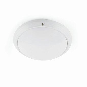 Faro Dakyu Plafoniera da esterno Bianco, 1-Luce
