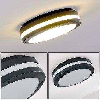 Wollongong Plafoniera da esterno LED Antracite, 1-Luce