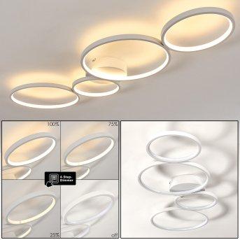 Rodekro Plafoniera LED Bianco, 1-Luce