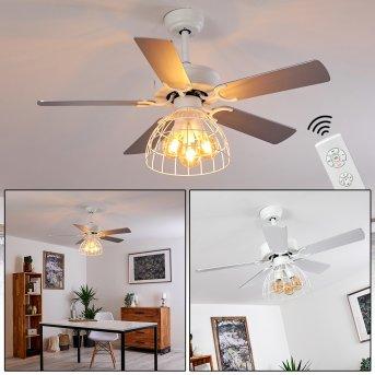 Izola ventilatore da soffitto Grigio, Bianco, 1-Luce, Telecomando