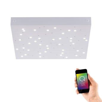 Plafoniera Paul Neuhaus Q-UNIVERSE LED Bianco, 1-Luce, Telecomando, Cambia colore