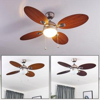 Nicosia ventilatore da soffitto Nichel opaco, Legno scuro, 1-Luce