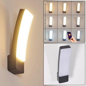 Maseru Applique da esterno LED Antracite, 1-Luce