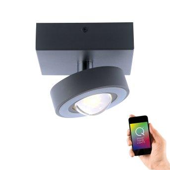 Plafoniera Paul Neuhaus Q-MIA LED Antracite, 1-Luce, Telecomando