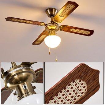 Ventilatori a soffitto Morea Legno scuro, Ottone antico, 1-Luce