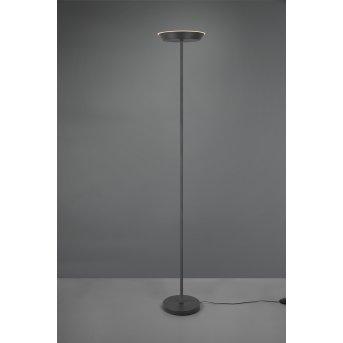 Reality Swona Lampada da terra LED Nero, 1-Luce