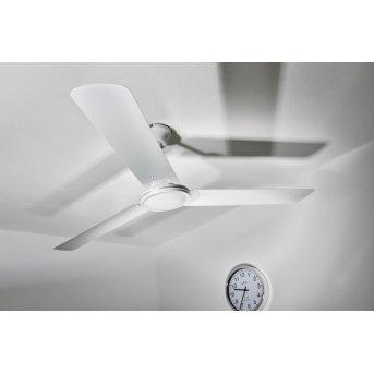 Globo FERRO Ventilatore Bianco, Telecomando