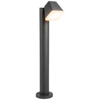 AEG Isacco Lampada da terra per esterno LED Antracite, 1-Luce