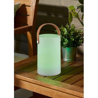 Reality ARUBA Lampada da esterno LED Bianco, 1-Luce, Cambia colore