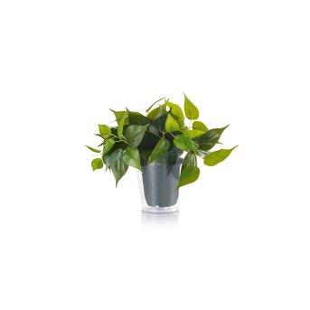 Trio Plant fiore LED Verde