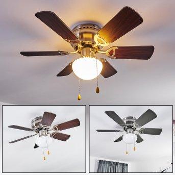 Trillo ventilatore da soffitto Nichel opaco, Grigio, Legno chiaro, 1-Luce