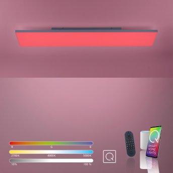 Paul Neuhaus Q-FLAG Plafoniera LED Bianco, 1-Luce, Telecomando, Cambia colore